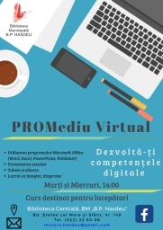 promediu-virtual-poster